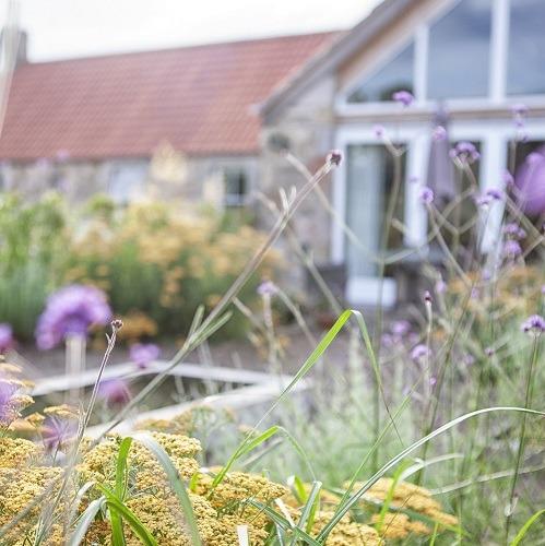 Rural_garden_design_Haddington