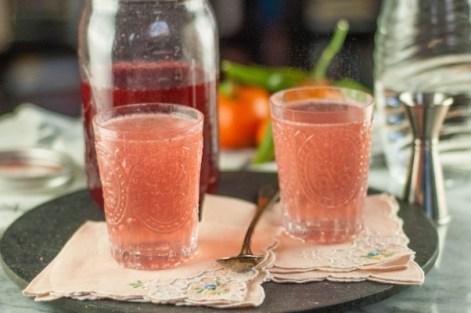 Blackberry-Raspberry Shrub (a drinking vinegar for fans of sour ...
