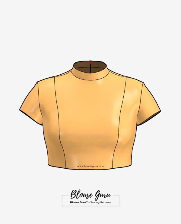 Blouse Guru Collar Neck Back Open Design 4 Front