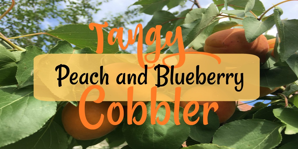 Tangy Peach and Blueberry Cobbler