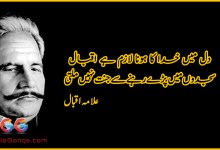 Photo of Dil me khuda ka hona lazim hai iqbal – Allama Iqbal Poetry