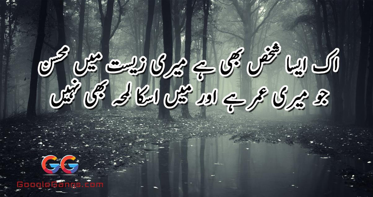 Ik Aisa shakhas bhi Hai Meri Zist Main Mohsin