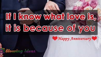 30 Best Wedding Anniversary Quotes