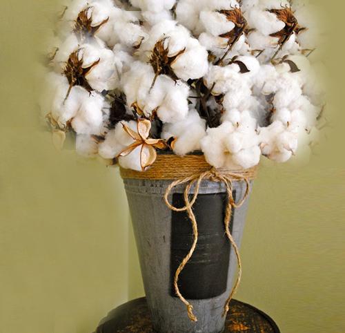 Cotton Flowers Bouquet Decoration