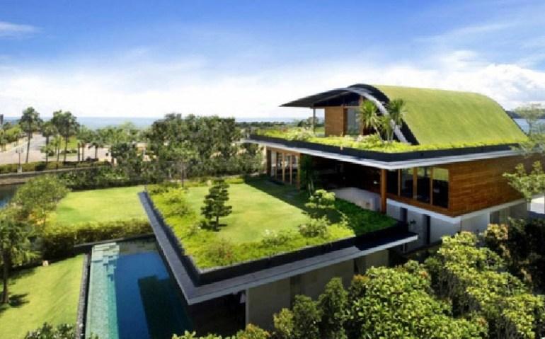 Rooftop Garden Design for Urban Home