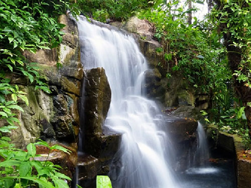 Artificial Waterfall In Garden