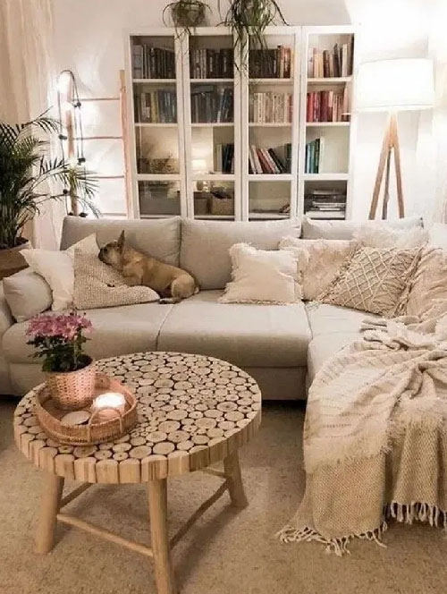 Cozy Apartment Living Room Decoration