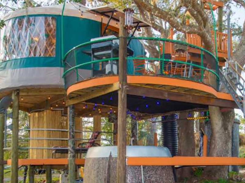 Extra Ordinary Tree House