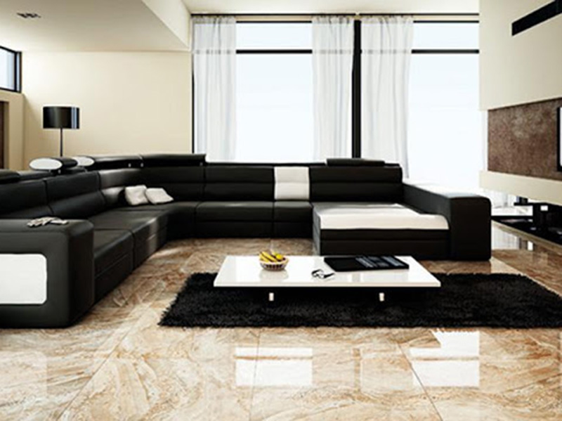 Proclain Floor Tiles Living Room