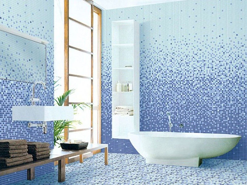 Blue And White Ceramic Wall Tiles In Bath Room