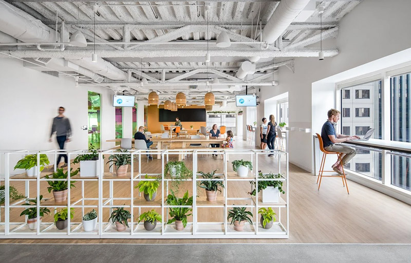 Sustainability Green Options In Office