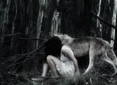 w.lesie.z.wilkiem