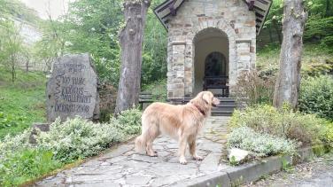 Kleine Kapelle kurz hinter Dernau