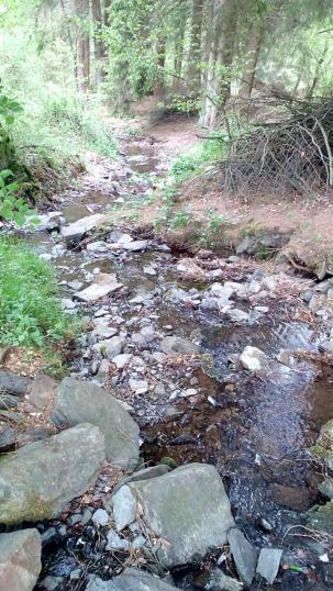 Der Klucksbach fließt in die Rur