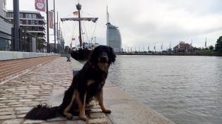 Doxi am Yachthafen