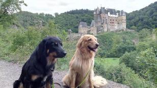 Mit Doxi und Bellis an der Burg Eltz