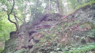 Muschelkalkablagerungen auf dem Buntsandstein