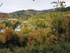 Blick vom Schlossberg auf den Herbstwald am Glasbach