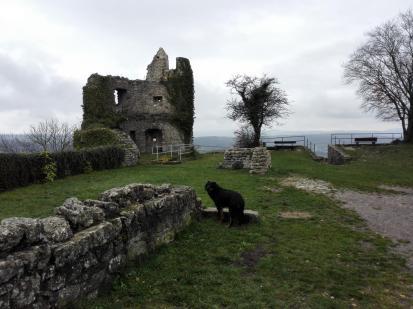 Die Burg ist nur noch in Teilen erhalten