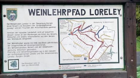 Weinlehrpfad auf dem Loreley-Felsplateau