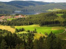 Blick zum Ostrand des Sees mit dem Ortsteil Schluchsee-Aha