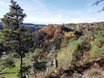 Blick vom Bildsteinfelsen Richtung Urberg