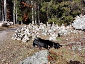 Doxi und die Steinmännchen