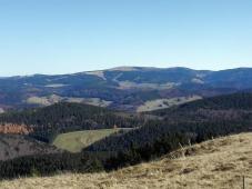 Blick hinüber zum Feldberg, dem höchsten Schwarzwaldgipfel