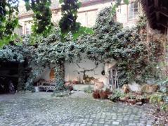 Innenhof der Alten Apotheke am Markt