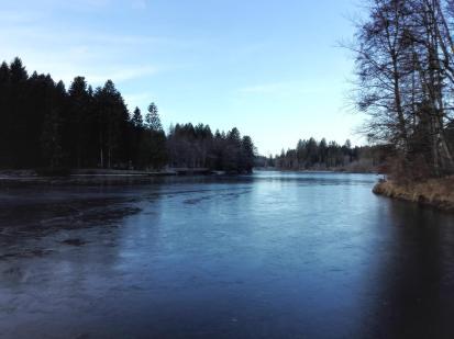 Der Waldsee ist bereits zugefroren, doch das Eis trägt noch nicht