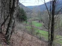 Blick in das Sahrbachtal