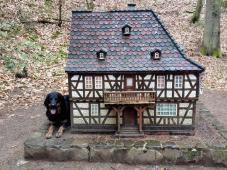 Doxi als überdimensionaler Wachhund