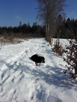 Schneewellen auf dem Weg am höchsten Punkt unserer Wanderung