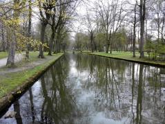 Wasserfläche im Hofgarten