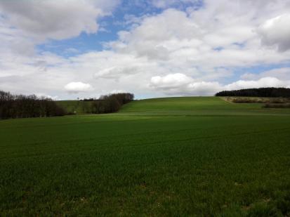Landschaft vor unserem Stellplatz an der Lohengrin Therme