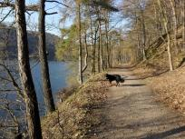 Fußweg am Edersee
