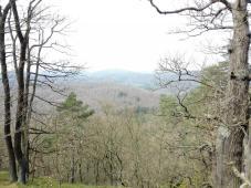 "Blick in die ""Hänge des Thüringer Waldes"