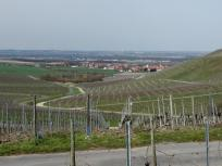 Blick in Richtung Kitzingen