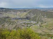 Blick vom Schrock hinunter nach Mayschoss. Am Horizont das Siebengebirge.