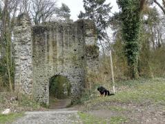 Reste der Burgmauer an der Ruine Kalsmunt