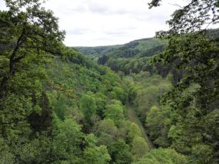 Blick hinunter auf die alte Bahnstrecke im Brexbachtal