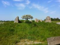 Das Großsteingrab bei Nobbin aus der Jungsteinzeit. Eines der größten Steingräber Norddeutschlands