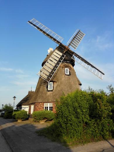 Die alte Holländermühle