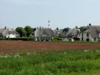 Schmucke neue Reetdachhäuser am Ortsrand von Zingst, dahinter der Leuchtturm
