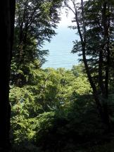 Immer wieder kann man durch den Wald aufs Meer blicken