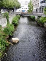Durch die Altstadt fließt der Fluss Hase