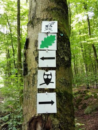 Unser Wanderweg rund um Braunfels