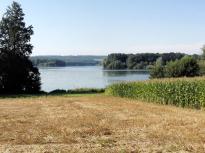 Blick über die Felder am Ufer des Sees