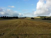 Weiter Blick in die Landschaft des Hunsrücks