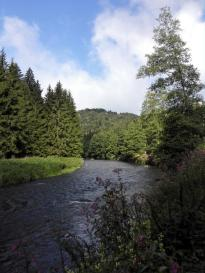 Hier wendet sich der Flusslauf kurzzeitig nach Westen